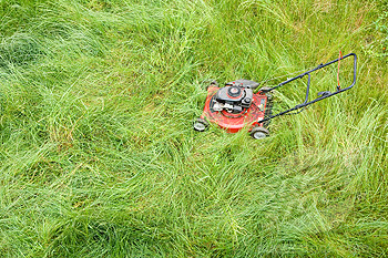 how to cut tall grass with a push mower