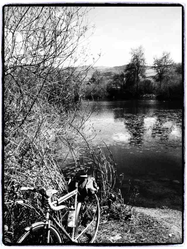 """Bike Path"", 17mm Zuiko lens, Grainy Film filter"