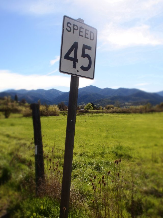 """Speed 45"", 17mm Zuiko lens, 'Diorama' filter"