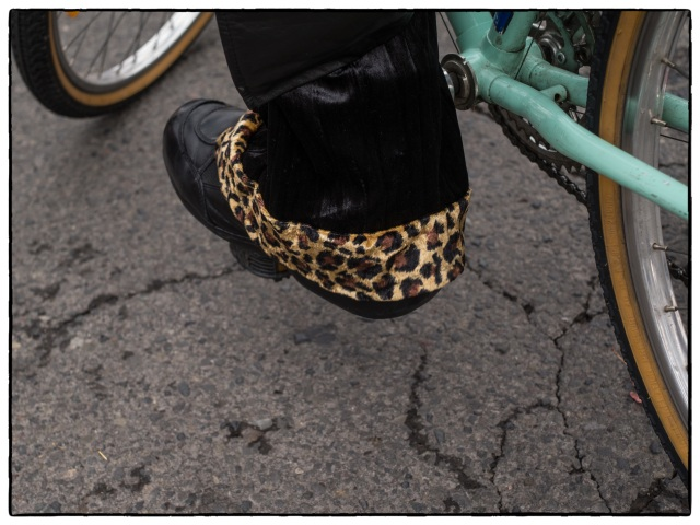 LeopardCyclist