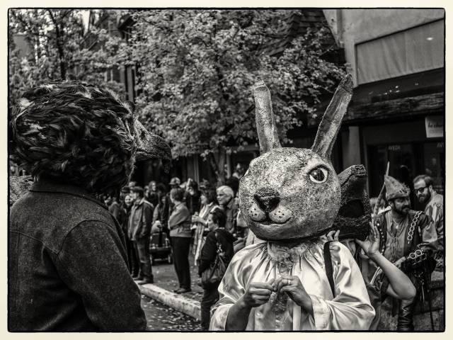 Rabbit&Eagle-PanF